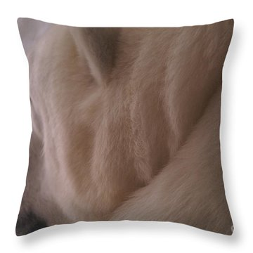 Polar Dream Throw Pillow by Linda Shafer