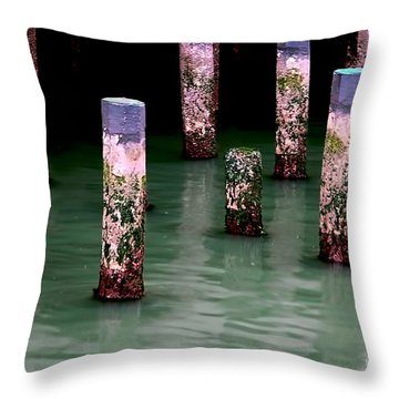 Poles In The Water Throw Pillow