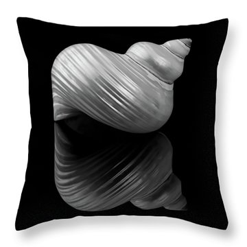 Polished Turban Shell And Reflection Throw Pillow by Jim Hughes