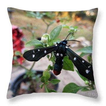 Polka Dot Wasp Moth Throw Pillow
