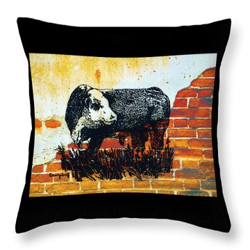Polled Hereford Bull  Throw Pillow