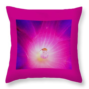 Pollen On Bug In Flower Throw Pillow