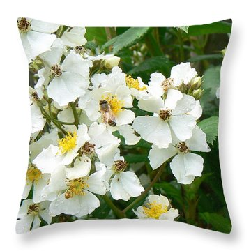 Pollenation Throw Pillow by Pamela Patch