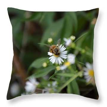 Pollinatin' Throw Pillow