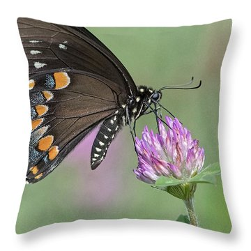 Pollinating #1 Throw Pillow by Wade Aiken