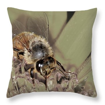 Pollinating Bee Throw Pillow