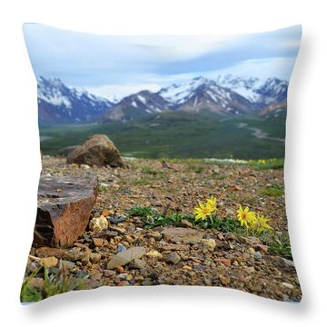Polychrome Pass, Denali Throw Pillow by Zawhaus Photography