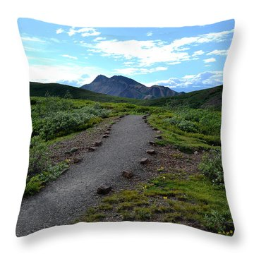 Polychrome Pass Trail, Denali Throw Pillow by Zawhaus Photography