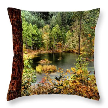 Pond At Golden Or. Throw Pillow