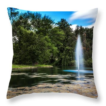 Pond At Spring Grove Throw Pillow