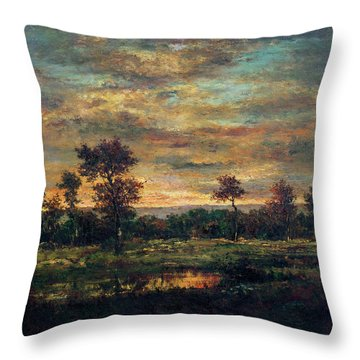 Pond At The Edge Of A Wood Throw Pillow