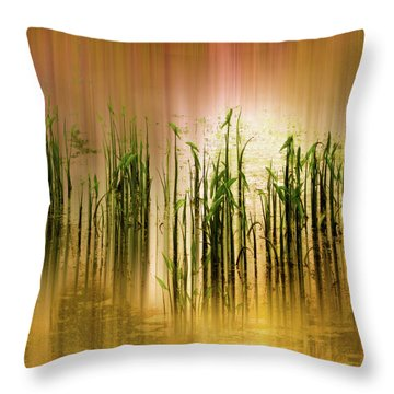 Throw Pillow featuring the photograph Pond Grass Abstract   by Jessica Jenney