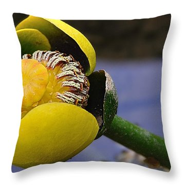 Pond Lily In Bloom Throw Pillow
