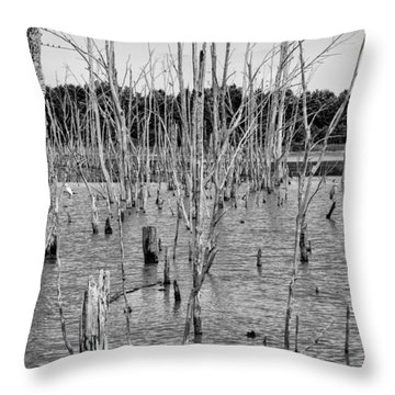 Pond Of Trees Throw Pillow