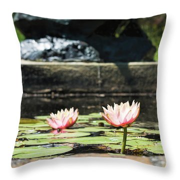 Pond Palette Throw Pillow