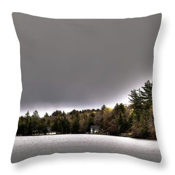 Pond Panorama Throw Pillow by David Patterson