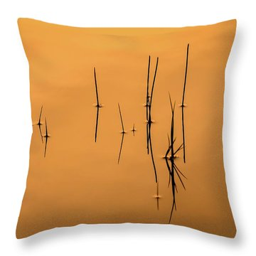 Pond Reeds In Reflected Sunrise Throw Pillow