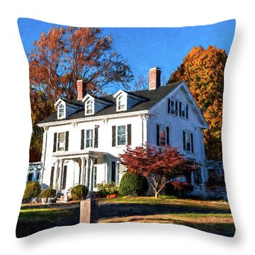 Pond Street Life In Jp Throw Pillow