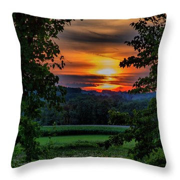 Pond Sunset  Throw Pillow