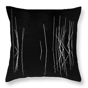 Pond Zen Throw Pillow
