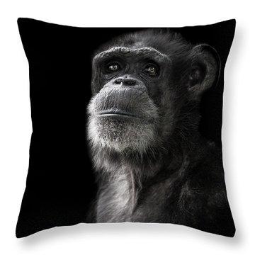 Ponder Throw Pillow by Paul Neville