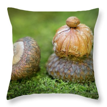 Throw Pillow featuring the photograph Pondering With Nature by Dale Kincaid