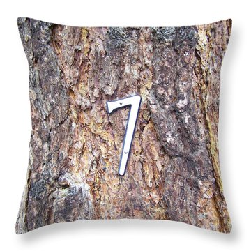 Ponderosa Throw Pillow by Pamela Walrath