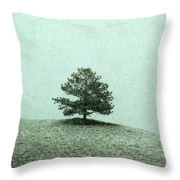 Ponderosa Pine Throw Pillow