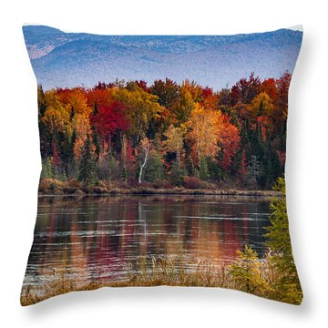 Pondicherry Fall Foliage Reflection Throw Pillow