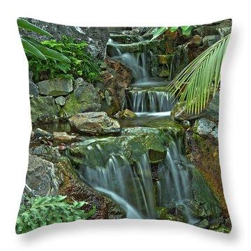 Pond@muttart Throw Pillow