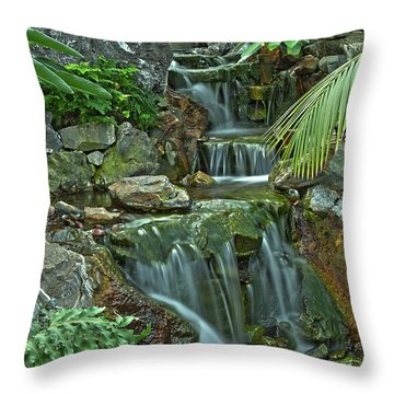 Pond@muttart Throw Pillow