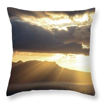Ponta Do Rosto Throw Pillow by Evgeni Dinev