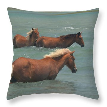 Pony Crossing.... Throw Pillow