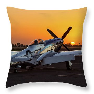 Pony In Repose Throw Pillow