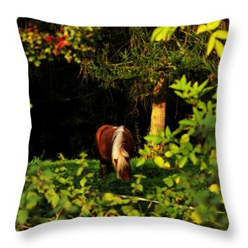 Pony In Sun-dappled Meadow Throw Pillow