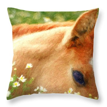 Pony In The Poppies Throw Pillow