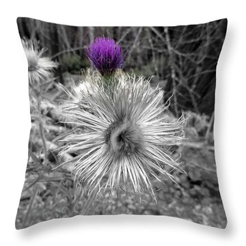 Throw Pillow featuring the photograph Poof by Marie Neder