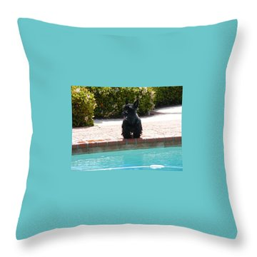 Pool Daze Throw Pillow