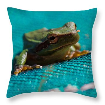 Throw Pillow featuring the photograph Pool Frog by Richard Patmore