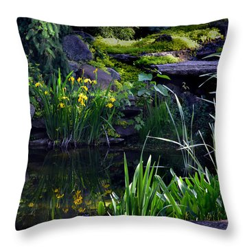 Pool Reflections Throw Pillow by Kathleen Stephens