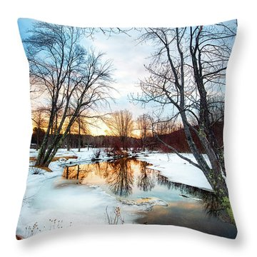 Poor Farm Brook Throw Pillow