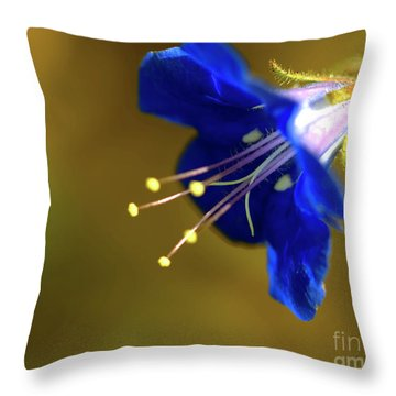 Poorman's Weatherglass  Throw Pillow