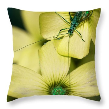 Throw Pillow featuring the photograph Pop Macro No. 2 by Laura Melis