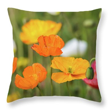 Throw Pillow featuring the photograph  Poppies 1 by Werner Padarin