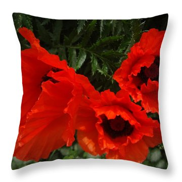 Poppies Allegro Throw Pillow