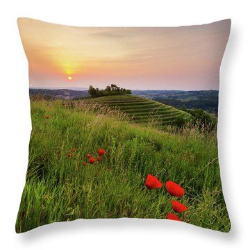 Poppies Burns Throw Pillow