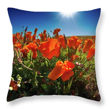 Throw Pillow featuring the photograph Poppies by Harry Spitz