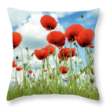 Poppies In Field Throw Pillow