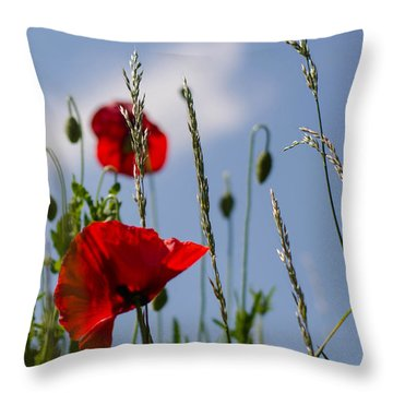 Poppies In The Skies Throw Pillow
