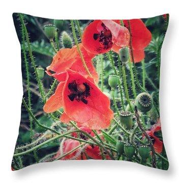 Poppies Throw Pillow by Karen Stahlros